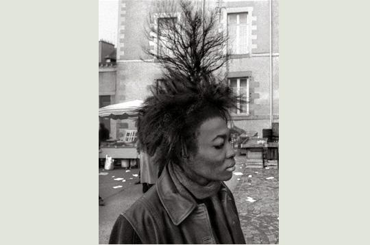 Le Bon Lien: Actualités, photos et vidéos  Le Huffington Post