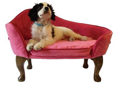no l 2006 9 cadeaux pour chiens et chats pink chaise. Black Bedroom Furniture Sets. Home Design Ideas