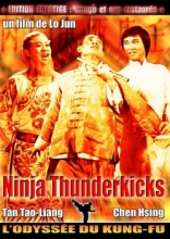 Ninjas Thunderkicks