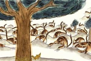 Tigres à la queue leu leu