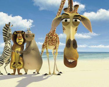 Quel friends a le mieux r ussi au cin ma david schwimmer - Girafe dans madagascar ...