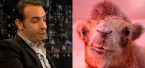 Les c l brit s qui ressemblent un animal for Dujardin qui fait le chameau