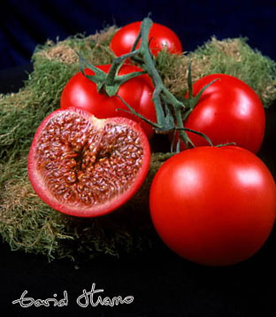 13-figue-tomate