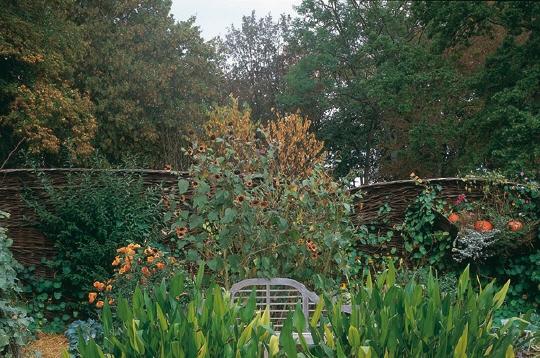 nature le parc floral de la source le potager. Black Bedroom Furniture Sets. Home Design Ideas