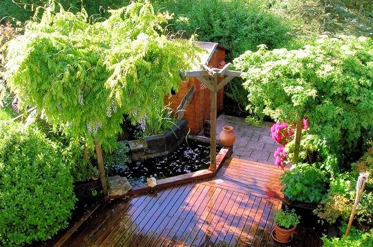 les plus beaux bassins des lecteurs - les plus beaux bassins sur l
