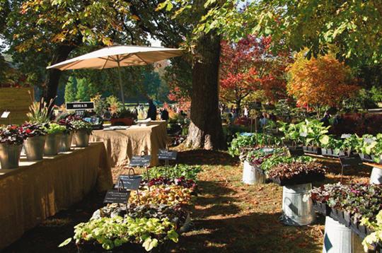 Journ es des plantes 9 photos du livre le jardin for Plantes jardin contemporain