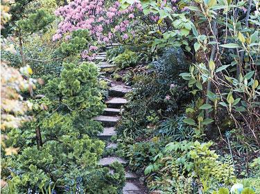 Paris au calme 15 havres de paix jardin alpin du for Plante ornementale des jardins
