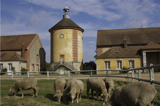 Rambouillet la bergerie nationale for Visite de rambouillet
