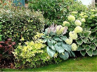 rendez vous aux jardins rendez vous aux jardins du 2 au 5 juin 2006. Black Bedroom Furniture Sets. Home Design Ideas