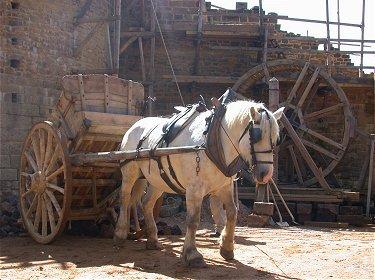 guedelon un des chevaux du ch teau de guedelon. Black Bedroom Furniture Sets. Home Design Ideas
