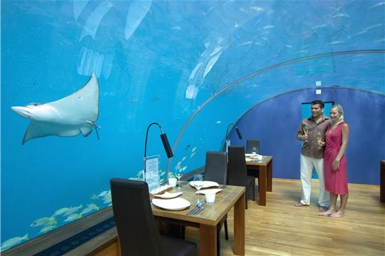 Ithaa un restaurant sous marin aux maldives visite d for Islas maldivas hoteles en el agua
