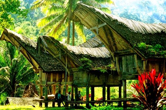 Voyager habitats du monde habitations toradjas - Les differentes habitations dans le monde ...