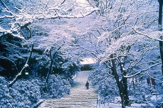 hiver f rique kyoto reflet du japon mill naire sur l 39 internaute voyager. Black Bedroom Furniture Sets. Home Design Ideas